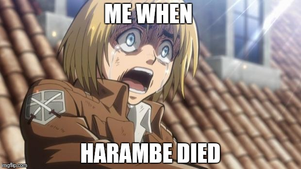 attack on titan | ME WHEN HARAMBE DIED | image tagged in attack on titan | made w/ Imgflip meme maker