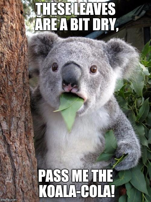 I need a drink | THESE LEAVES ARE A BIT DRY, PASS ME THE KOALA-COLA! | image tagged in memes,surprised koala,coca cola,drink,thirsty | made w/ Imgflip meme maker