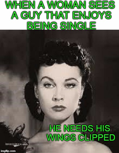 They don't like to see guys having the freedom to do what they want. | WHEN A WOMAN SEES A GUY THAT ENJOYS BEING SINGLE HE NEEDS HIS WINGS CLIPPED | image tagged in first world problems | made w/ Imgflip meme maker