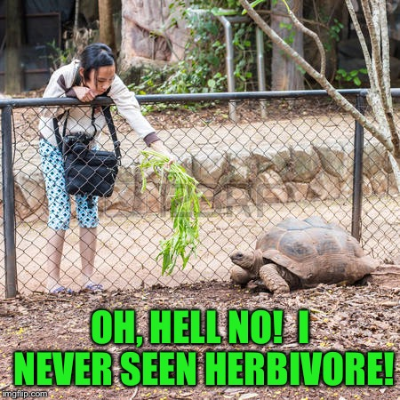 OH, HELL NO!  I NEVER SEEN HERBIVORE! | made w/ Imgflip meme maker