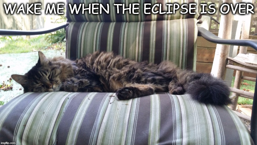 WAKE ME WHEN THE ECLIPSE IS OVER | image tagged in tgif jackers | made w/ Imgflip meme maker