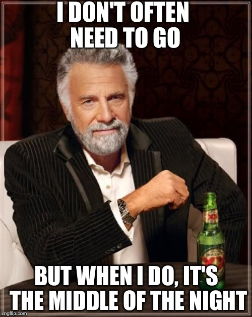 The Most Interesting Man In The World Meme | I DON'T OFTEN NEED TO GO BUT WHEN I DO, IT'S THE MIDDLE OF THE NIGHT | image tagged in memes,the most interesting man in the world | made w/ Imgflip meme maker