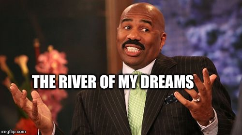Steve Harvey Meme | THE RIVER OF MY DREAMS | image tagged in memes,steve harvey | made w/ Imgflip meme maker