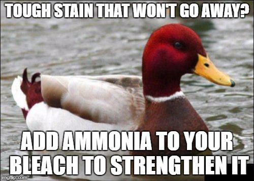 Malicious Advice Mallard Meme | TOUGH STAIN THAT WON'T GO AWAY? ADD AMMONIA TO YOUR BLEACH TO STRENGTHEN IT | image tagged in memes,malicious advice mallard | made w/ Imgflip meme maker