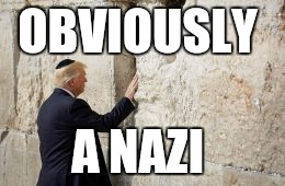 liberal logic  | OBVIOUSLY A NAZI | image tagged in president trump,jewish,nazi | made w/ Imgflip meme maker