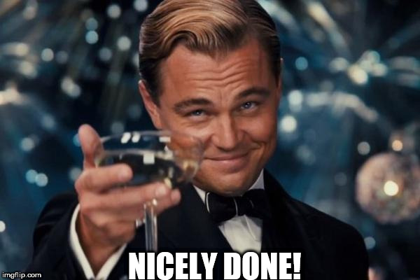 Leonardo Dicaprio Cheers Meme | NICELY DONE! | image tagged in memes,leonardo dicaprio cheers | made w/ Imgflip meme maker