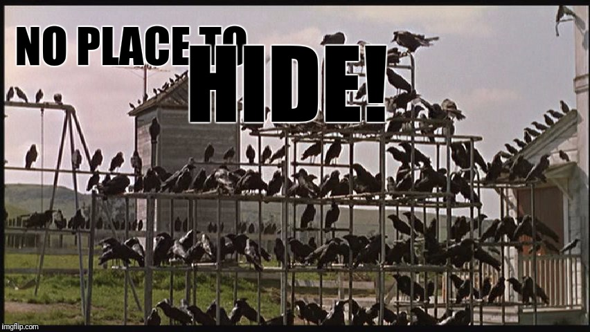 NO PLACE TO HIDE! | made w/ Imgflip meme maker