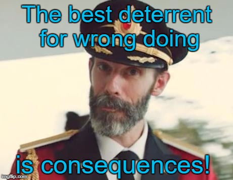 Captain Obvious | The best deterrent for wrong doing is consequences! | image tagged in captain obvious,memes | made w/ Imgflip meme maker