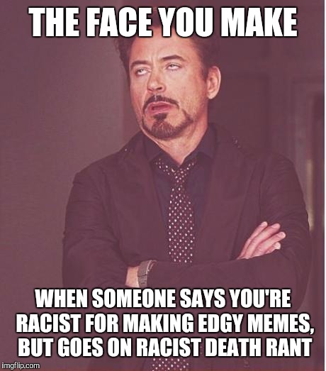 Face You Make Robert Downey Jr Meme | THE FACE YOU MAKE WHEN SOMEONE SAYS YOU'RE RACIST FOR MAKING EDGY MEMES, BUT GOES ON RACIST DEATH RANT | image tagged in memes,face you make robert downey jr | made w/ Imgflip meme maker