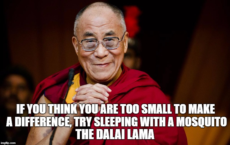 IF YOU THINK YOU ARE TOO SMALL TO MAKE A DIFFERENCE, TRY SLEEPING WITH A MOSQUITO THE DALAI LAMA | image tagged in the dalai lama | made w/ Imgflip meme maker