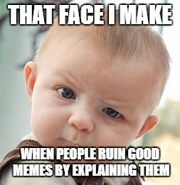 Skeptical Baby Meme | THAT FACE I MAKE WHEN PEOPLE RUIN GOOD MEMES BY EXPLAINING THEM | image tagged in memes,skeptical baby | made w/ Imgflip meme maker