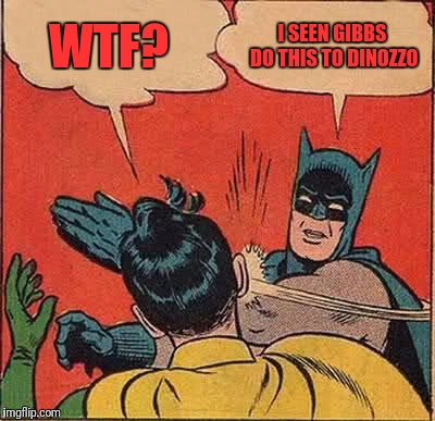 Batman Slapping Robin Meme | WTF? I SEEN GIBBS DO THIS TO DINOZZO | image tagged in memes,batman slapping robin | made w/ Imgflip meme maker