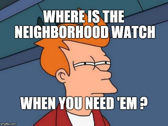 Futurama Fry Meme | WHERE IS THE NEIGHBORHOOD WATCH WHEN YOU NEED 'EM ? | image tagged in memes,futurama fry | made w/ Imgflip meme maker
