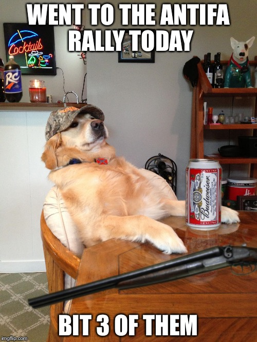 redneck retriever | WENT TO THE ANTIFA RALLY TODAY BIT 3 OF THEM | image tagged in redneck retriever | made w/ Imgflip meme maker