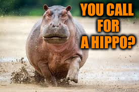 YOU CALL FOR A HIPPO? | made w/ Imgflip meme maker