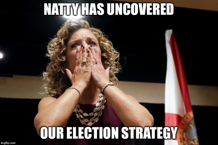 Debbie fired | NATTY HAS UNCOVERED OUR ELECTION STRATEGY | image tagged in debbie fired | made w/ Imgflip meme maker