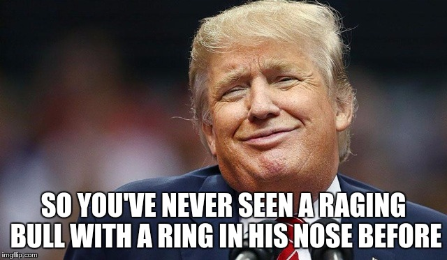 Trump Oopsie | SO YOU'VE NEVER SEEN A RAGING BULL WITH A RING IN HIS NOSE BEFORE | image tagged in trump oopsie | made w/ Imgflip meme maker