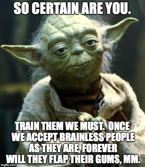 Star Wars Yoda Meme | SO CERTAIN ARE YOU. TRAIN THEM WE MUST.  ONCE WE ACCEPT BRAINLESS PEOPLE AS THEY ARE, FOREVER WILL THEY FLAP THEIR GUMS, MM. | image tagged in memes,star wars yoda | made w/ Imgflip meme maker