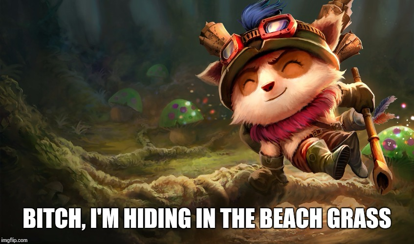 B**CH, I'M HIDING IN THE BEACH GRASS | made w/ Imgflip meme maker