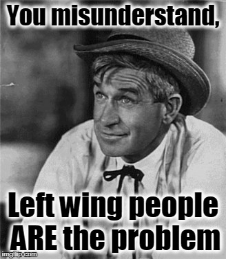 Reality Bites | You misunderstand, Left wing people ARE the problem | image tagged in reality bites | made w/ Imgflip meme maker