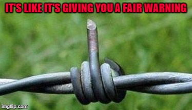 I still have a few scars from barbed wire fences...but I got away from the cops!!! |  IT'S LIKE IT'S GIVING YOU A FAIR WARNING | image tagged in barbed wire flipping the bird,memes,barbed wire,funny,flipping the bird | made w/ Imgflip meme maker