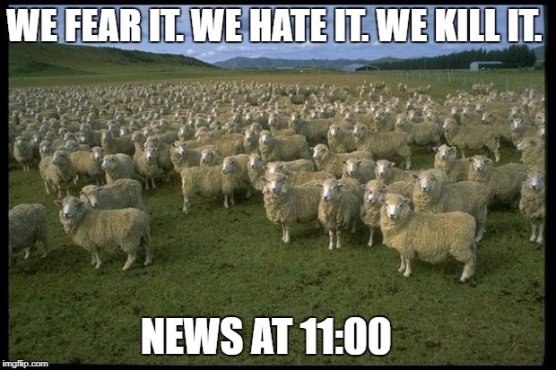 Obama Sheep | WE FEAR IT. WE HATE IT. WE KILL IT. NEWS AT 11:00 | image tagged in obama sheep | made w/ Imgflip meme maker
