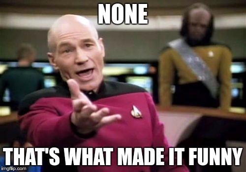 Picard Wtf Meme | NONE THAT'S WHAT MADE IT FUNNY | image tagged in memes,picard wtf | made w/ Imgflip meme maker