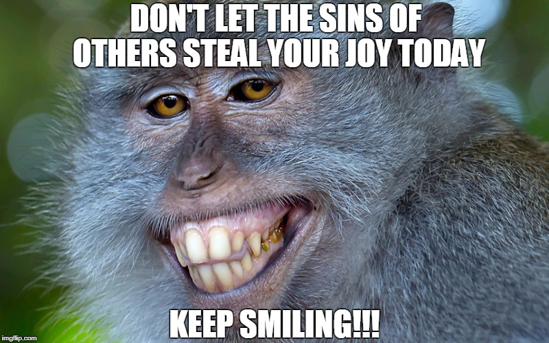 funny animals | DON'T LET THE SINS OF OTHERS STEAL YOUR JOY TODAY KEEP SMILING!!! | image tagged in funny animals | made w/ Imgflip meme maker