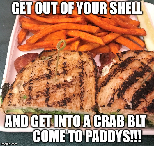 Get out of your Shell |  GET OUT OF YOUR SHELL; AND GET INTO A CRAB BLT         COME TO PADDYS!!! | image tagged in portsmouth,restaurant,cometopaddys,imthere,lunch,dinner | made w/ Imgflip meme maker