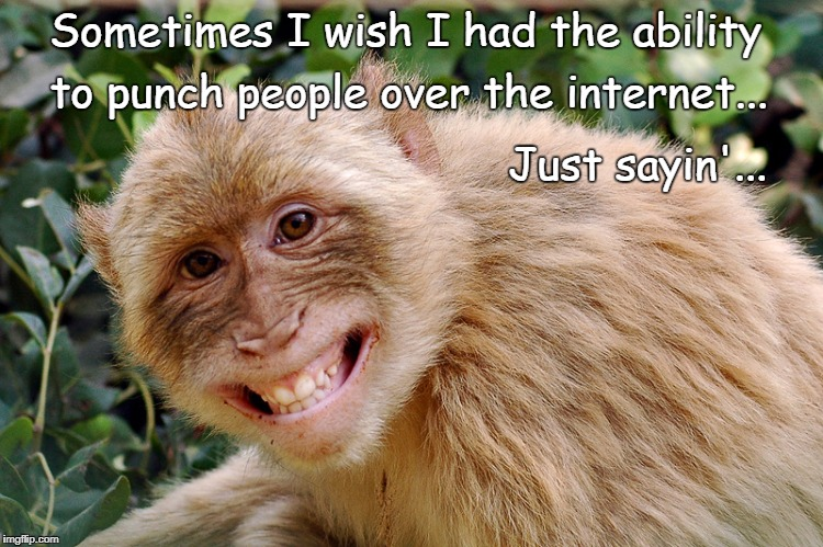 Sometimes I wish... | Sometimes I wish I had the ability to punch people over the internet... Just sayin'... | image tagged in sometimes,wish,ability,punch,internet | made w/ Imgflip meme maker