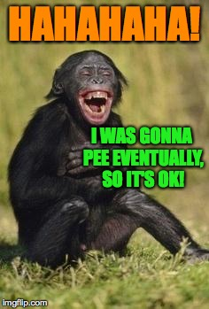 HAHAHAHA! I WAS GONNA PEE EVENTUALLY, SO IT'S OK! | made w/ Imgflip meme maker