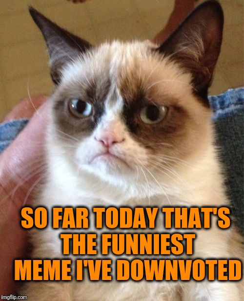 Grumpy Cat Meme | SO FAR TODAY THAT'S THE FUNNIEST MEME I'VE DOWNVOTED | image tagged in memes,grumpy cat | made w/ Imgflip meme maker
