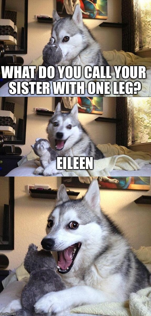 Bad Pun Dog Meme | WHAT DO YOU CALL YOUR SISTER WITH ONE LEG? EILEEN | image tagged in memes,bad pun dog | made w/ Imgflip meme maker