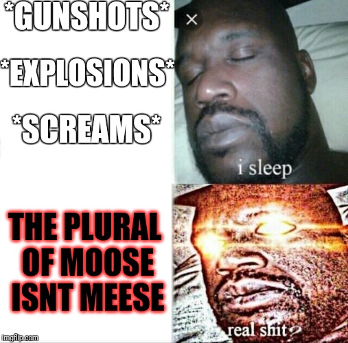 Sleeping Shaq Meme | *GUNSHOTS* *EXPLOSIONS* *SCREAMS* THE PLURAL OF MOOSE ISNT MEESE | image tagged in sleeping shaq | made w/ Imgflip meme maker