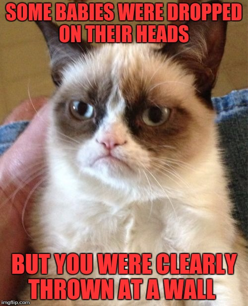 Grumpy Cat Meme | SOME BABIES WERE DROPPED ON THEIR HEADS BUT YOU WERE CLEARLY THROWN AT A WALL | image tagged in memes,grumpy cat | made w/ Imgflip meme maker