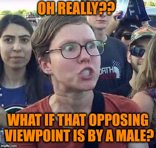 Triggered feminist | OH REALLY?? WHAT IF THAT OPPOSING VIEWPOINT IS BY A MALE? | image tagged in triggered feminist | made w/ Imgflip meme maker