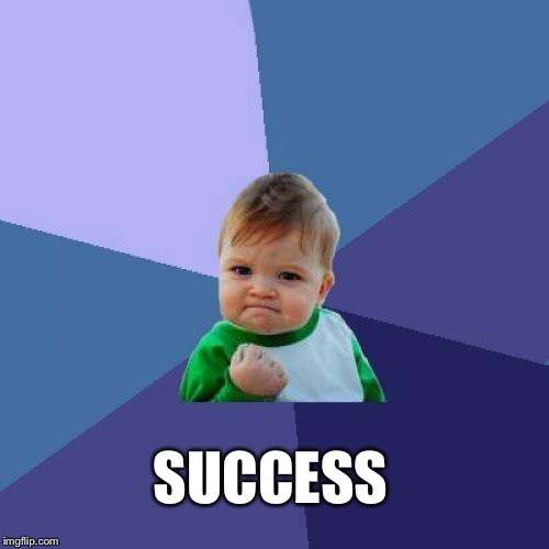 Success Kid Meme | SUCCESS | image tagged in memes,success kid | made w/ Imgflip meme maker