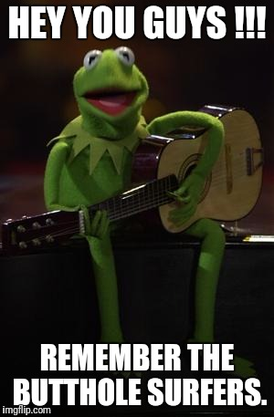 Kermit Guitar | HEY YOU GUYS !!! REMEMBER THE BUTTHOLE SURFERS. | image tagged in kermit guitar | made w/ Imgflip meme maker