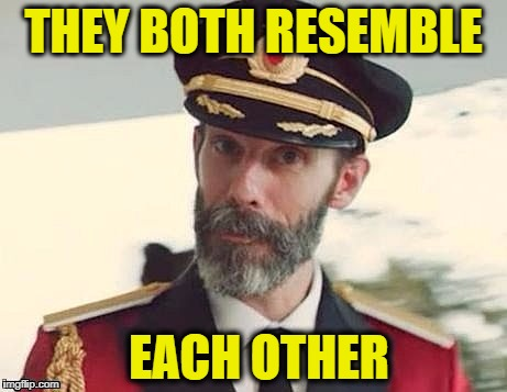 Captain Obvious | THEY BOTH RESEMBLE EACH OTHER | image tagged in captain obvious | made w/ Imgflip meme maker