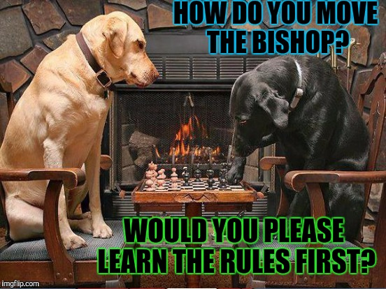 HOW DO YOU MOVE THE BISHOP? WOULD YOU PLEASE LEARN THE RULES FIRST? | made w/ Imgflip meme maker