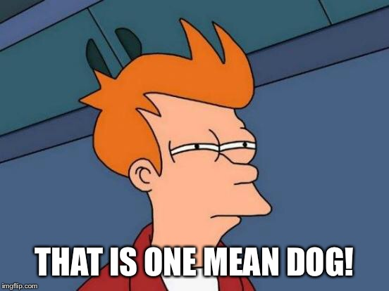 Futurama Fry Meme | THAT IS ONE MEAN DOG! | image tagged in memes,futurama fry | made w/ Imgflip meme maker