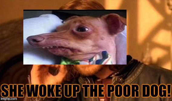 SHE WOKE UP THE POOR DOG! | made w/ Imgflip meme maker