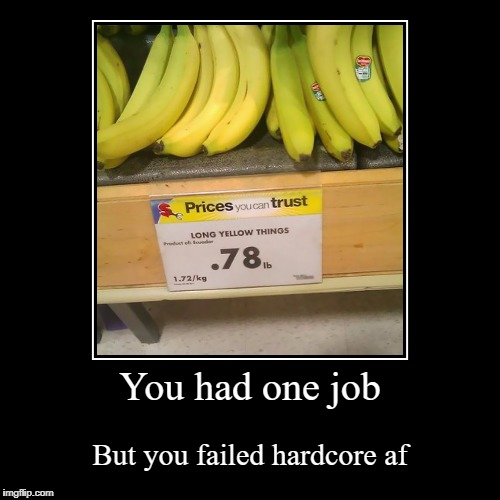 You had one job | But you failed hardcore af | image tagged in funny,demotivationals | made w/ Imgflip demotivational maker