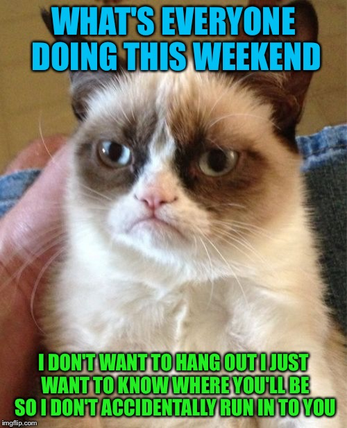 I'm gonna do me and you just do you | WHAT'S EVERYONE DOING THIS WEEKEND I DON'T WANT TO HANG OUT I JUST WANT TO KNOW WHERE YOU'LL BE SO I DON'T ACCIDENTALLY RUN IN TO YOU | image tagged in memes,grumpy cat,eclipse | made w/ Imgflip meme maker