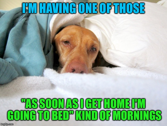 "Every morning for me | I'M HAVING ONE OF THOSE ""AS SOON AS I GET HOME I'M GOING TO BED"" KIND OF MORNINGS 