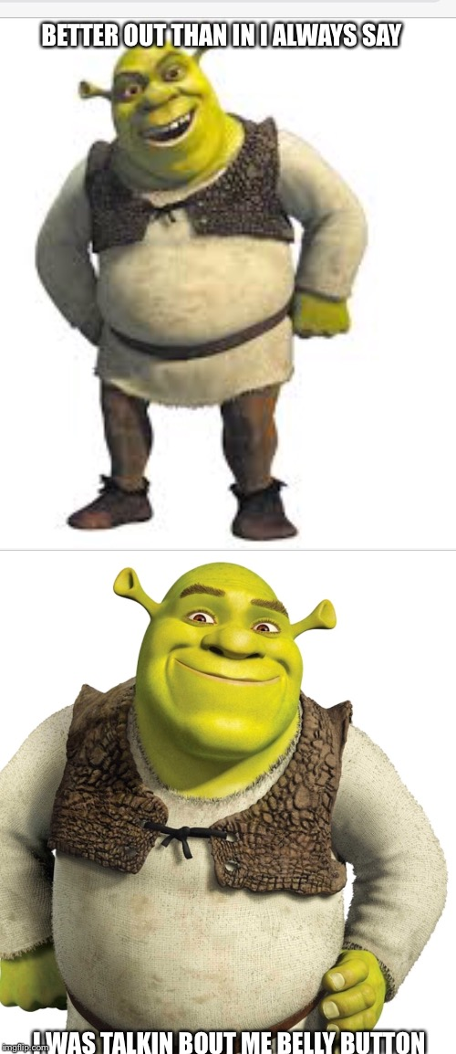 Outies  | BETTER OUT THAN IN I ALWAYS SAY I WAS TALKIN BOUT ME BELLY BUTTON | image tagged in shrek,bad pun,funny memes,latest stream | made w/ Imgflip meme maker