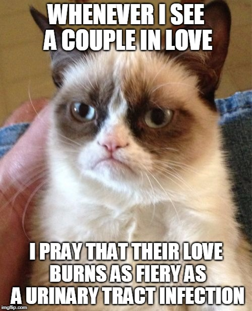 Grumpy Cat Meme | WHENEVER I SEE A COUPLE IN LOVE I PRAY THAT THEIR LOVE BURNS AS FIERY AS A URINARY TRACT INFECTION | image tagged in memes,grumpy cat | made w/ Imgflip meme maker