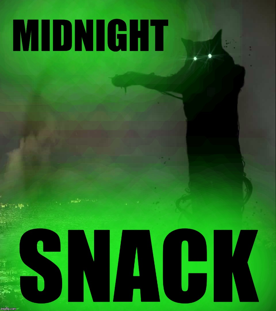 When the cat is hungry at night  | MIDNIGHT SNACK | image tagged in godzilla cat,midnight,snack,tacgnol | made w/ Imgflip meme maker