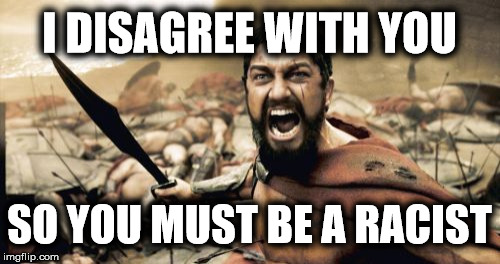 Sparta Leonidas Meme | I DISAGREE WITH YOU SO YOU MUST BE A RACIST | image tagged in memes,sparta leonidas | made w/ Imgflip meme maker