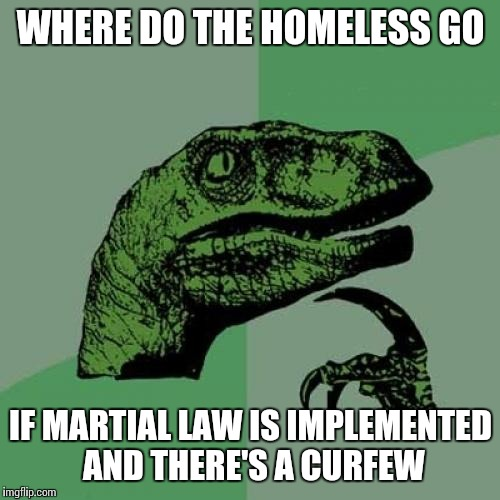 Philosoraptor Meme | WHERE DO THE HOMELESS GO IF MARTIAL LAW IS IMPLEMENTED AND THERE'S A CURFEW | image tagged in memes,philosoraptor | made w/ Imgflip meme maker